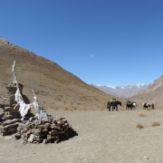 Trek to Barmi La (4600m) – Lingshed Sumdo, 6-7 hrs