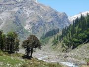 Manali (1950m), drive to Sethan (2700m) - Jobri (2800m), Trek to Chikka (3100m), 4 hrs.